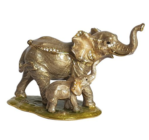 Elephant with young treasurine