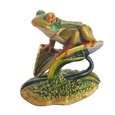 Frog on Lily Leaf
