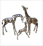 Silver Giraffe Family